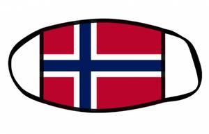 Bilde av Munnbind norsk flagg